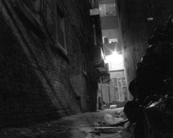 POEM: Light in the Dark Alley of Confusion